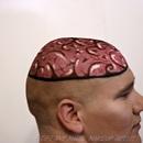 The Brain!!!!!!