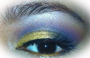 I used the wet n wild trio icon for this eyes