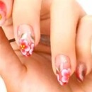 Chrysanthemum, Korean floral nail art