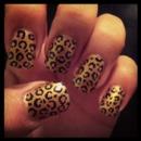 Cheetah RAWR