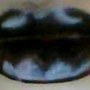 Batman Lips