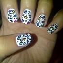 coloured cheetah prints