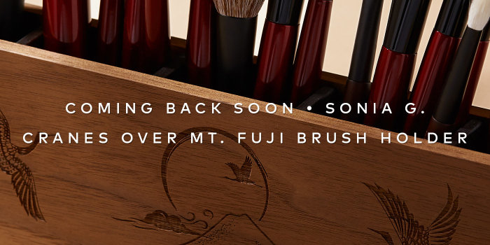 Sonia G.'s sold-out brush holder is coming back. Sign up to be first in line when it returns.