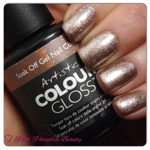 Artistic Colour Gel Gloss