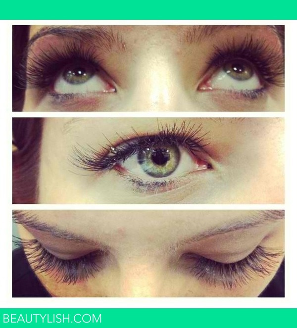 eyelash extensions eyelash extensions - Mandy K.'s Photo - Beautylish - 웹