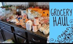 GROCERY HAUL | TARGET & LOWES FOOD GROCERY HAUL