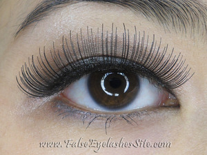 A Painfully Honest Product Review  http://blog.falseeyelashessite.com/lessons-i-learned-from-elegant-lashes-067-a-painfully-honest-product-review-2/#comments
