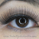 Lessons I Learned from Elegant Lashes #067