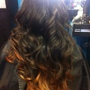 Dark brown to copper tips