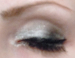 Festive silver eye
