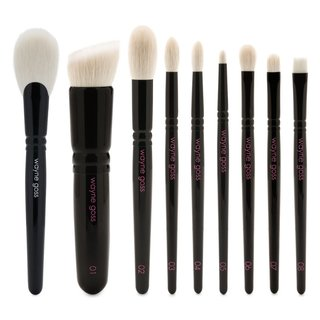 Wayne Goss The Holiday Brush 2018 & The Anniversary Set Volume 2 Bundle