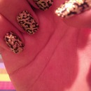 Cheetah Print (: