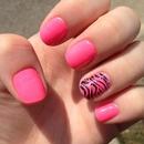 Pink & Sparkly Zebra!