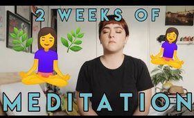 Two Weeks of Meditation