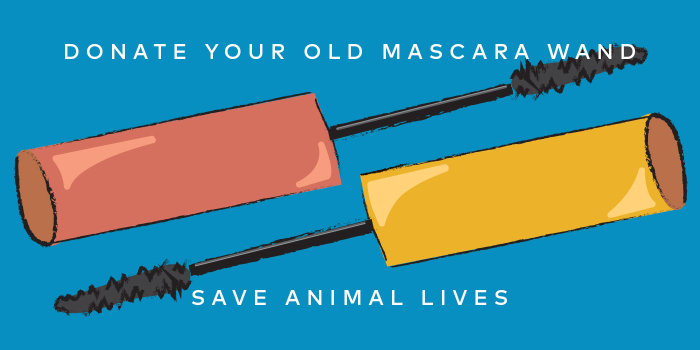 Your Old Mascara Wands Can Save Animal Lives - Read How Here.