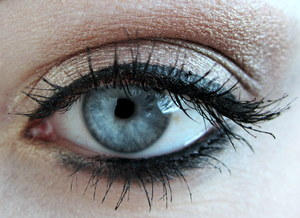 This is just a simple eye look that I did using only L'Oreal Infallible Eyeshadow. They're amazing!