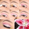 Pictorial   stargazer lilies