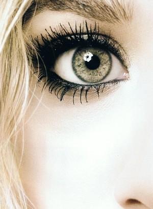 Make-up (28)
