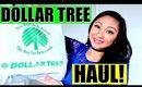 DOLLAR TREE HAUL 2017!