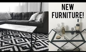 New Coffee Table & Bar Cart! Los Angeles Apartment Moving Vlog   Olivia Frescura