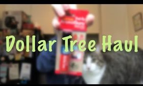 Dollar Tree: Meme Games, Aromatherapy Roll Ons and New Squishys   March 19, 2019