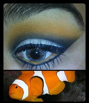 clown fish are beautiful..