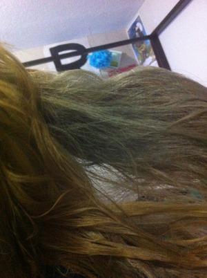 ion titanium on orange hair