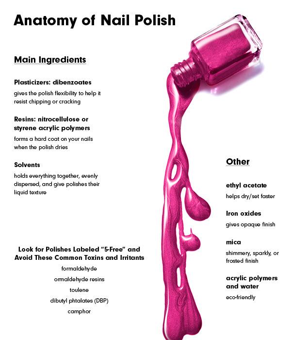 Anatomy Of A Beauty Product Nail Polish Beautylish