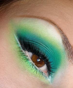 Teal, Lime and White