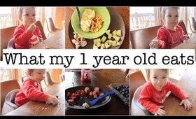 What My 13 Month Old Eats in a Day!!