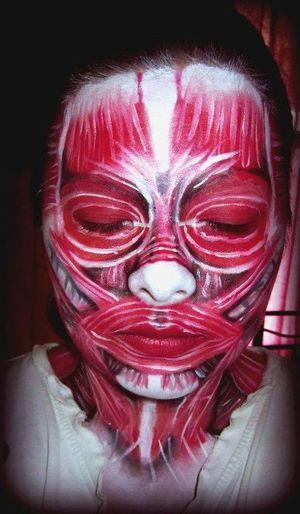 Full face anatomy