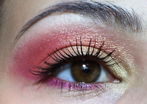 Using the 120 eyeshadow palette from Fraulein 38