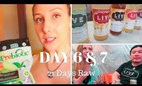 21 Days Raw: Day 6 & 7 | Prebiotics | Probiotics | Benefits of Kombucha