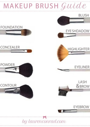 Different brushes and what they're used for.