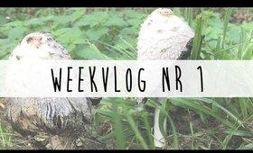 Vlog Week 1