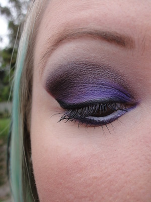 Purple Fall Leaves Inspired