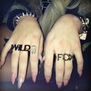 How To Catch A Wildfox