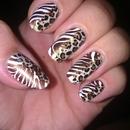 Wild naillife