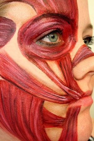 Facial Muscles | I saw someone do this look and I thought it was super cool so I looked up one of those science book diagrams of the muscles and tired it out. There's way more going on in there for real lol but I like the effect :)