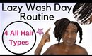 4c Natural Hair | LAZY Natural WASH DAY ROUTINE Only 3 Hair Products