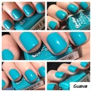 Barry m guava