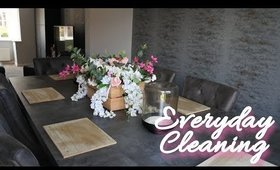 EVERYDAY CLEANING ROUTINE - Vlog | Danielle Scott