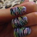 Pastel rainbow zebra