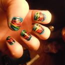 Rainbow Zebra Stripe