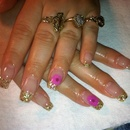 Gold Tips With Pink Dry Flowers