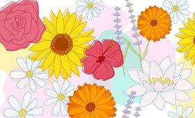 7 Floral Ingredients for 7 Common Skin Concerns