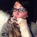 A funny Picture with my 3 ferrets Lio, Benny and CoCo