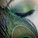 peacock makeup look..