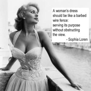 Vestido de una mujer debe ser como una cerca de alambre de púas ... servir a su propósito sin obstruir la vista.