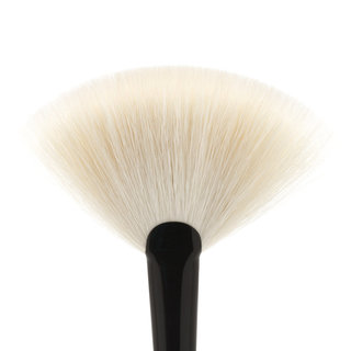 Brush 15 Fan Brush